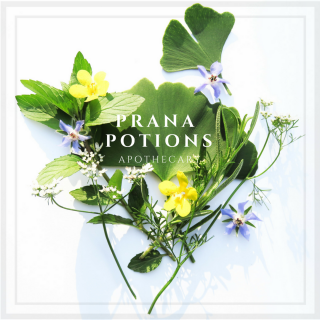 Prana Potions LLC